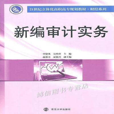 正版新编审计实务申建英南京大学出版社南京大学出版社申建英 等
