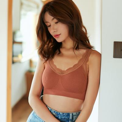 俞兆林無縫螺紋內衣女短款百搭運動性感仙女美背蕾絲裹胸