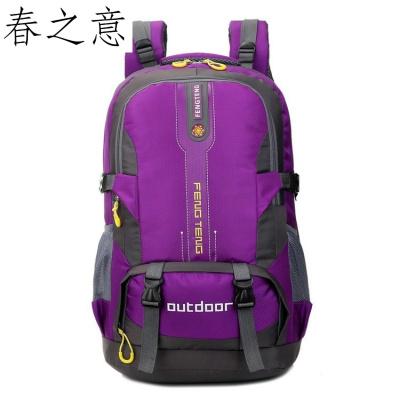 春之意防水雙肩背包運動包50L大容量旅行登山包學生背包
