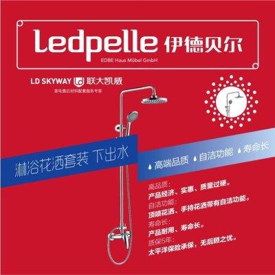 伊德贝尔 经济型拉杆花洒L01 1个/件 单个零售 银色