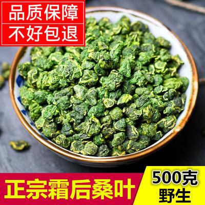 (閃電發貨)霜桑葉茶500g特級新鮮霜后凍干桑葉茶蒲公英茶