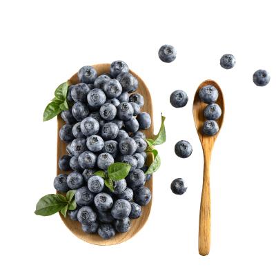 藍莓鮮果125g*8盒 新鮮藍莓1000g現摘現發 孕婦水果寶寶輔食 南京溧水無想田園 如遇雨天延后發貨