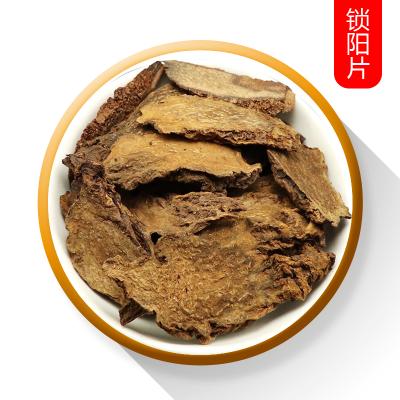 金疆蕓泡酒料鎖陽片500克