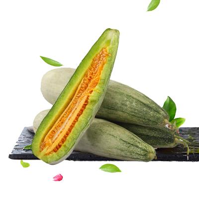 【順豐配送】果貴緣 羊角蜜甜瓜山東特產現摘現發新鮮羊角脆香酥瓜香瓜5斤