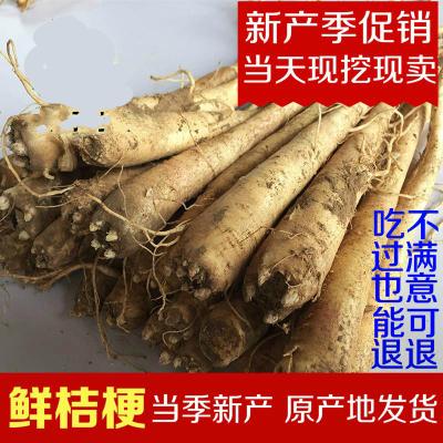 新產鮮桔梗1500克/二年生鮮桔梗/狗寶咸菜/赤峰新產/3斤