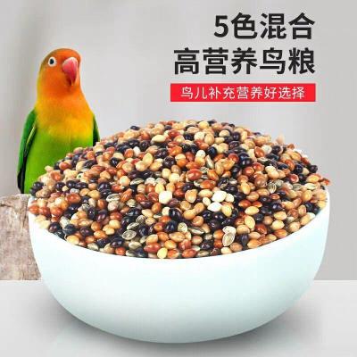 【送鸚鵡飲水器】 五色黍子 帶殼小米鸚鵡 鳥食飼料谷子 五色黍子【5斤裝】
