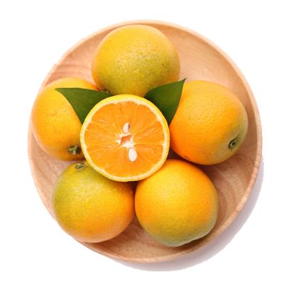 陳小四水果 新鮮秭歸夏橙 5斤 精品大果 單果約70-80mm 榨汁橙 新鮮水果 生鮮 橙子 其他