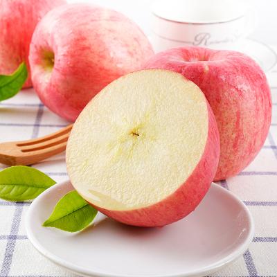 【順豐直達】陜西洛川紅富士新鮮蘋果水果 20枚85 國產水果