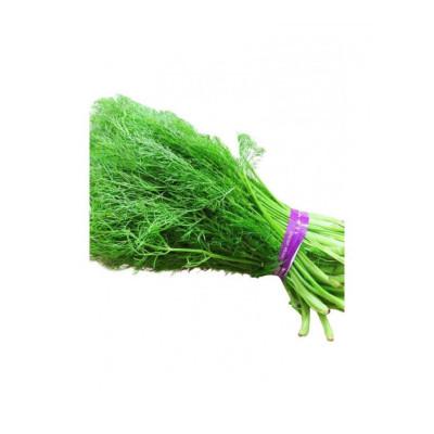 博多客 新鲜茴香菜小茴香苗2kg农家蔬菜茴香丸子