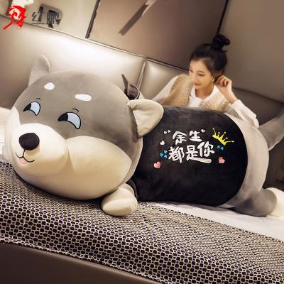 【廠家】哈士奇公仔布娃娃可愛二哈毛絨玩具狗女孩睡覺抱枕頭生日玩偶兒童玩具毛絨玩偶雷賓