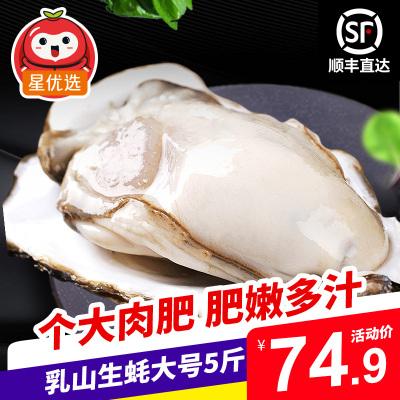 【順豐直達】星優選 鮮活乳山生蠔精品大號5斤裝 約12-16個 單個150-200g 牡蠣海蠣子 生鮮貝類海鮮水產
