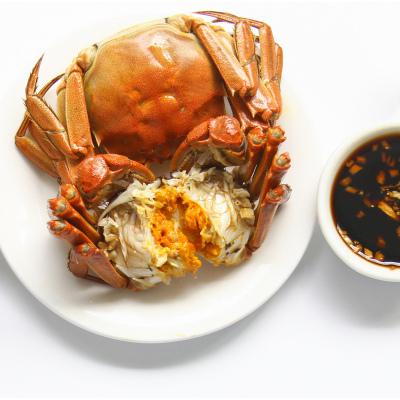【驚喜預售】品味私廚 陽澄湖大閘蟹 蟹禮禮盒(公4.5兩+母3.0兩 4對)