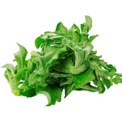 博多客 冰草 新鲜冰菜沙拉蔬菜冰叶野菜 生鲜 1.5kg