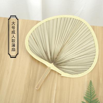 扇子大蒲扇濟公扇老式中國風古典寶寶扇驅蚊葵扇手工夏季芭蕉扇子 大號(優質款買二送一同款)