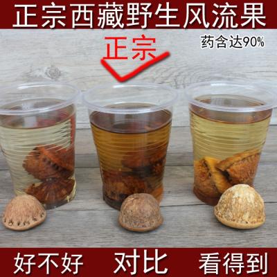 西藏果野生果藤果果泡酒材料可配肉苁蓉500g