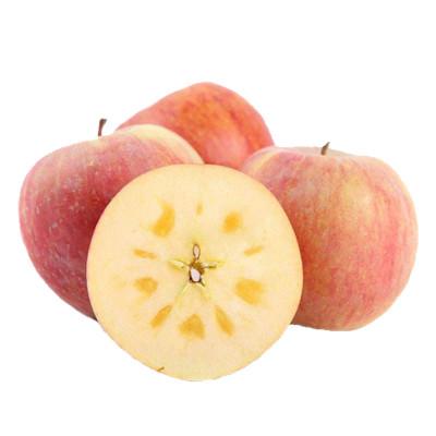 久蓮天然 冰糖心紅富士丑蘋果 10斤中大果帶箱 約20個內【膜袋】新鮮水果應季脆甜多汁 果園現摘發貨 凈重約8.5-9斤