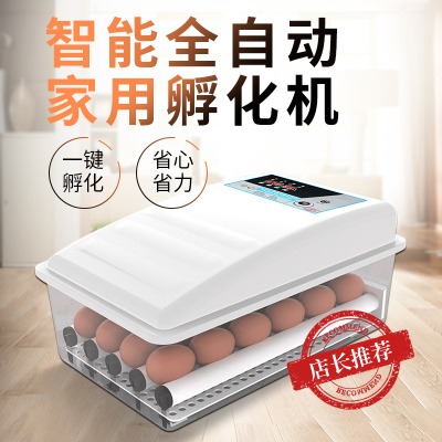 納麗雅(Naliya)孵化器全自動小型家用小雞鴨鵝蛋孵化機智能孵蛋器恒溫水床孵蛋箱 36枚水床升級款