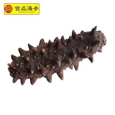 宮品淡干海參干貨3.5-3.8cm 1只 國產簡裝盒裝 生鮮 海鮮水產