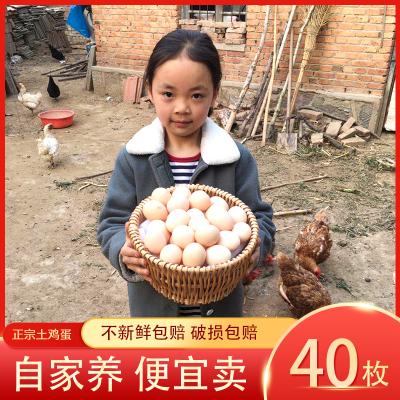 【40枚裝】正宗農家土雞蛋40枚 農家散養笨雞蛋柴雞蛋草雞蛋 非鵪鶉蛋鴨蛋鵝蛋 桃小淘