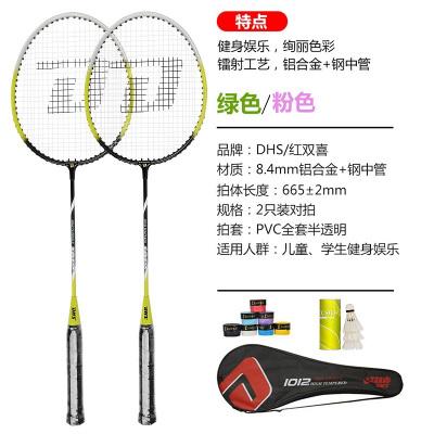 紅雙喜(DHS) 羽毛球拍對拍套裝家庭娛樂情侶休閑必備 新手初學適用羽毛球拍1012